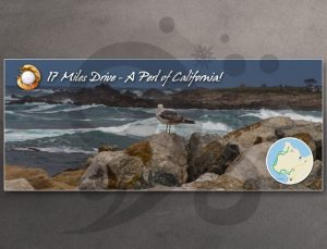 "Postcard ""17 Miles Drive – A Perl of California!"""